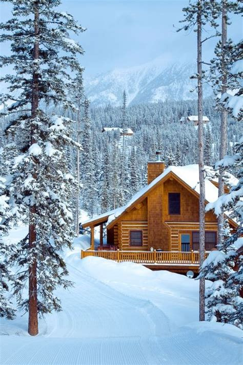 Tahoe Cabin For Rent by 25 Trending Lake Tahoe Cabin Rentals Ideas On
