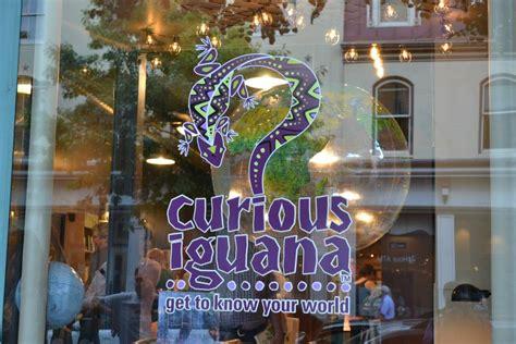 nomadland surviving america in the twenty century thorndike large print lifestyles books home curious iguana
