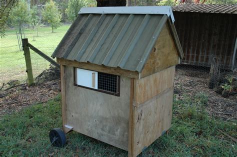 How To Build A Chook Shed by Julian S Chook Shed Kingston Mens Shed