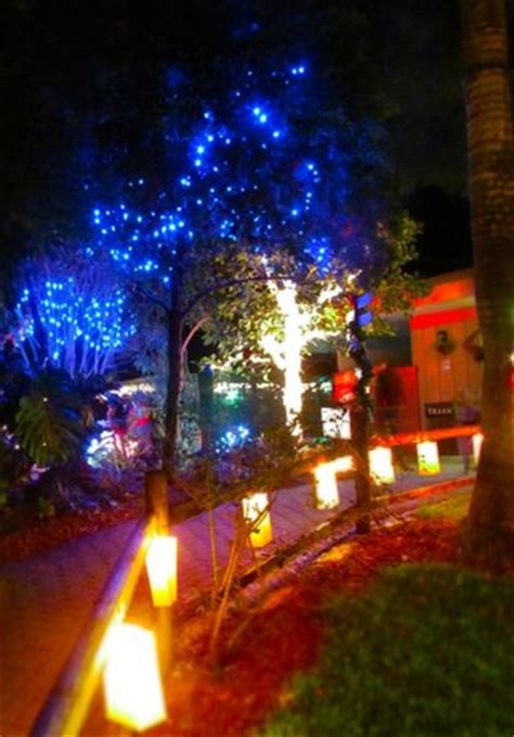 holiday lights spectacular picture of sarasota jungle