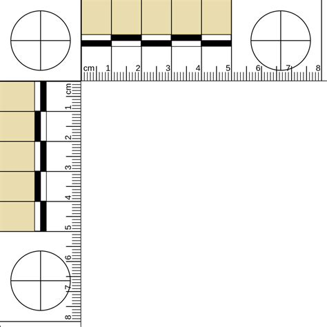 printable evidence ruler file 50 mm l ruler ty svg wikimedia commons