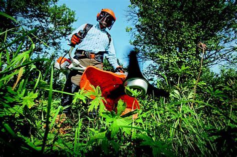 lavorare come giardiniere giardiniere mansioni competenze e sbocchi professionali