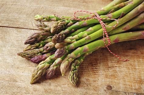 asparagi cucinare dieci ricette con gli asparagi