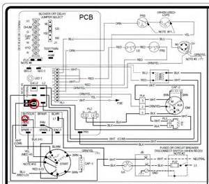 thermostat wiring diagram for gas furnace get free image about wiring diagram