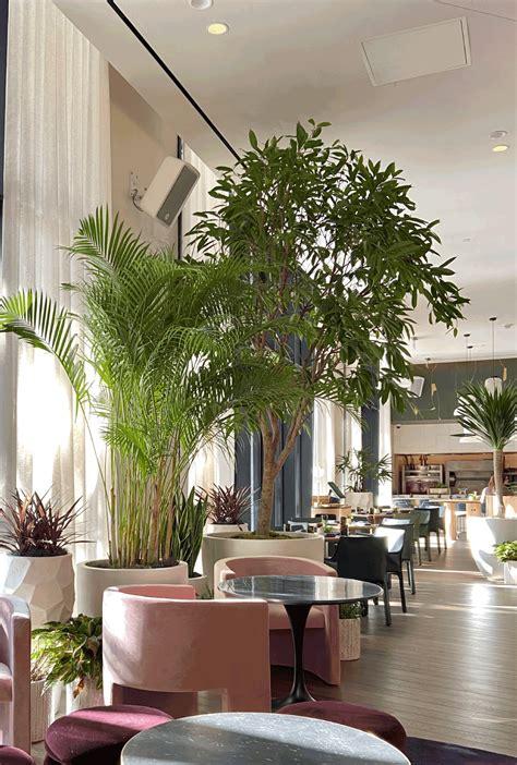 virgin hotel dallas natura enhancing  built