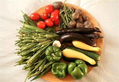 alimentazione ricerca cibo 3 0 ricerca tecnologia e sicurezza alimentare per