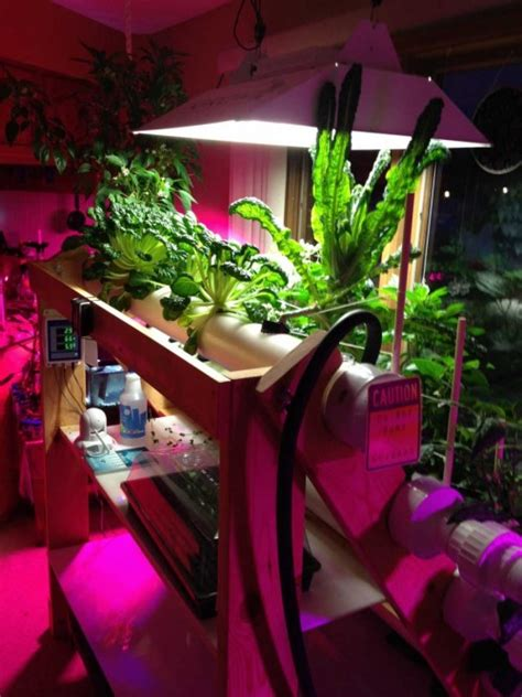 indoor gardening  home hydroponics powerhouse hydroponics