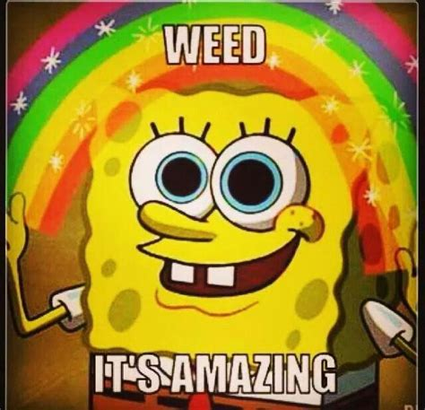 Spongebob Weed Memes - 109 best images about marijuana quotes on pinterest