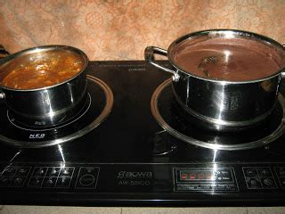 Microwave Aowa cinta itu abadi induction cooker
