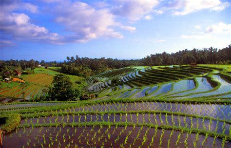 A Place Indonesia Bali Indonesia Tourist Destinations