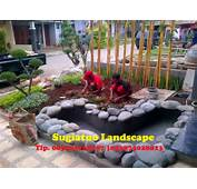 Taman Contoh Landscape Dan Gardening 2016 Car Release Date
