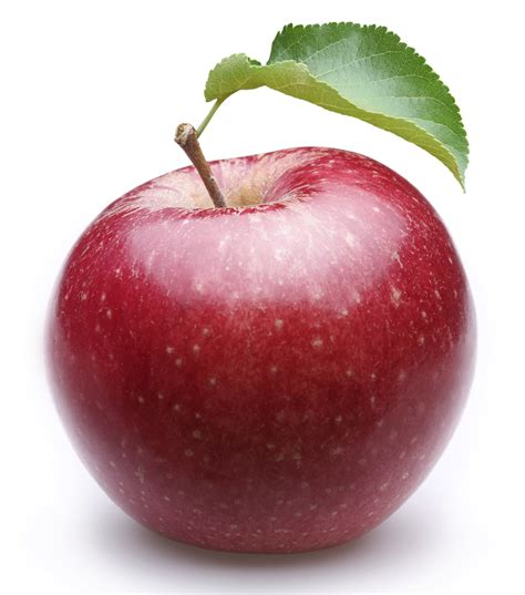 Apple For S an apple a day how apples keep you healthy the secret