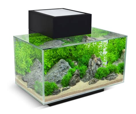 Timer Lu Aquarium fluval edge 23l noir les nanos aquariums fluval aqualux concept