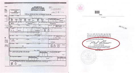 Ny Birth Records Best 25 Birth Certificate Application Ideas On