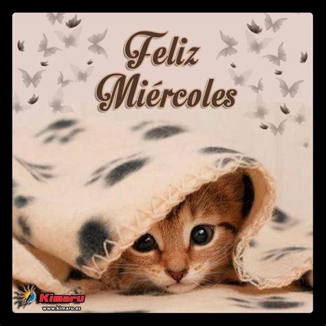 imagenes de buenos dias amor con gatitos lindos gatitos con frases lindas de buenos dias en