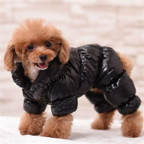 small puppy clothes small pet coat jacket winter clothes puppy cat sweater coat clothing apparel ebay