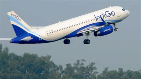 fog grounds all 23 chandigarh flights international flights diverted to delhi punjab