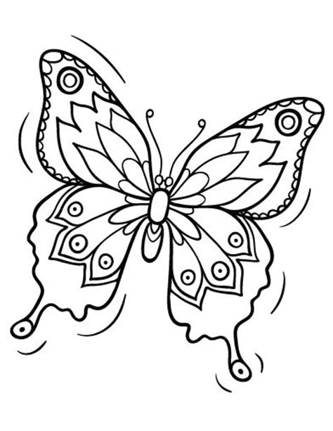 butterfly coloring page pdf pinterest the world s catalog of ideas