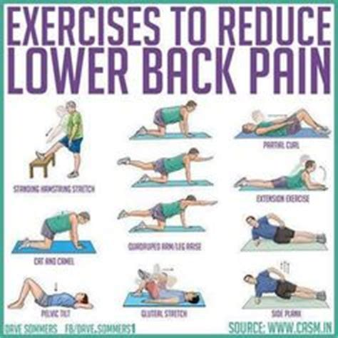 exercises for bad back on back exercises exercise and abdominal exercises