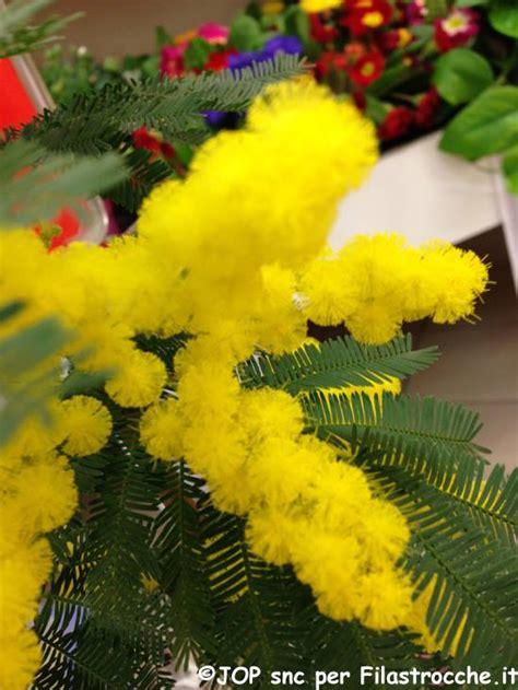 inps fiori buon 8 marzo i testi di michele luongo per la festa