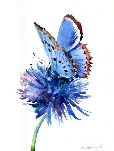 painting butterfly butterfly paintings watercolor search pinteres