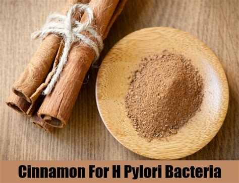5 cures for h pylori bacteria how to cure h