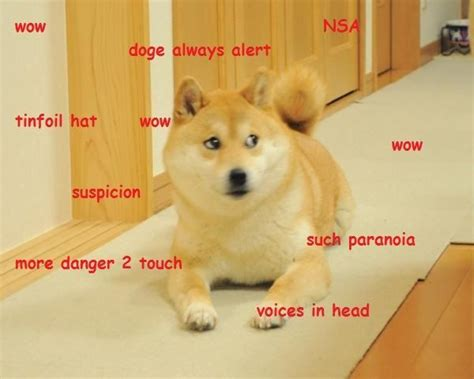 Doge Meme Best - best 25 doge ideas on pinterest doge meme funny doge