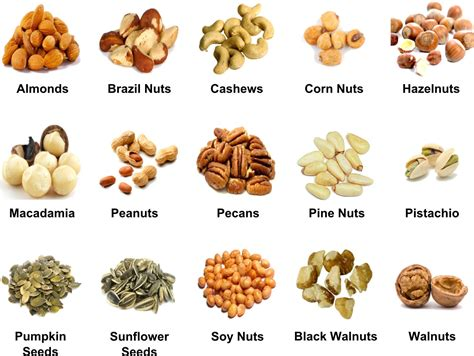 All About Almonds 2 by Of Tree Nuts Included Walnuts Hazelnuts Almonds Brazil