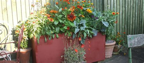 Recycled Container Gardening Ideas Six Ideas For A Recycled Garden Planter Coldwell Banker Blue Matter