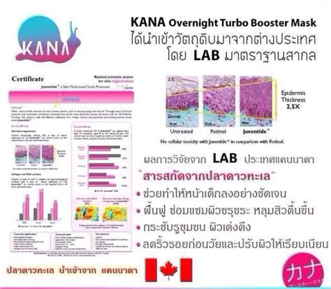 Kana Dna Snail Starfish Turbo Booster Sleeping T2909 kana d na snail starfish overnight turbo booster mask 30 g thailand best selling products