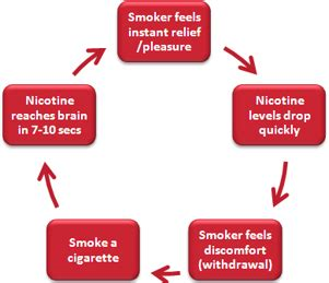 How Does It Take To Detox From Nhs by How Does Nicotine Stay In Your System I Quit Bad Habits