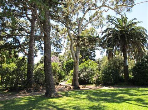 Williamstown Botanic Gardens Williamstown Botanic Gardens Australia Top Tips Before You Go With Photos Tripadvisor