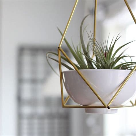 Hanging Planters | 6 unique hanging planters for your home
