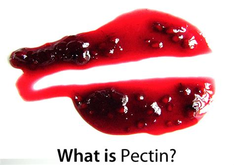 fruit pectin pectin products wordscat