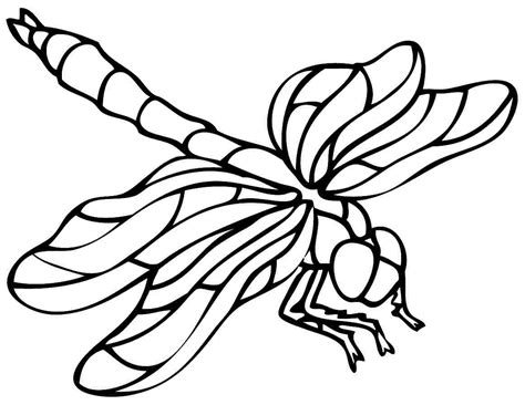 Coloring Dragonfly Cartoon Coloring Pages Dragonfly Colouring Pages