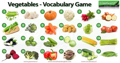 adventures in veggieland help your learn to vegetables with 100 easy activities and recipes books fruit and veggie fast steps for weight loss all