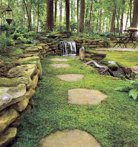 moss backyard ground covering plants for your lawn gardening mother