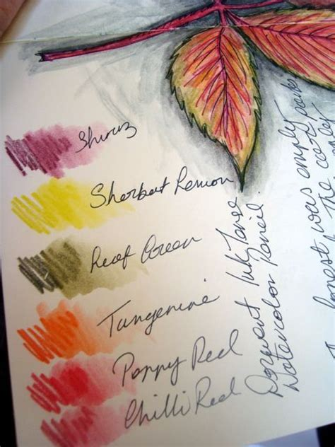 tutorial on using watercolor pencils the 34 best images about how to watercolor pencils on
