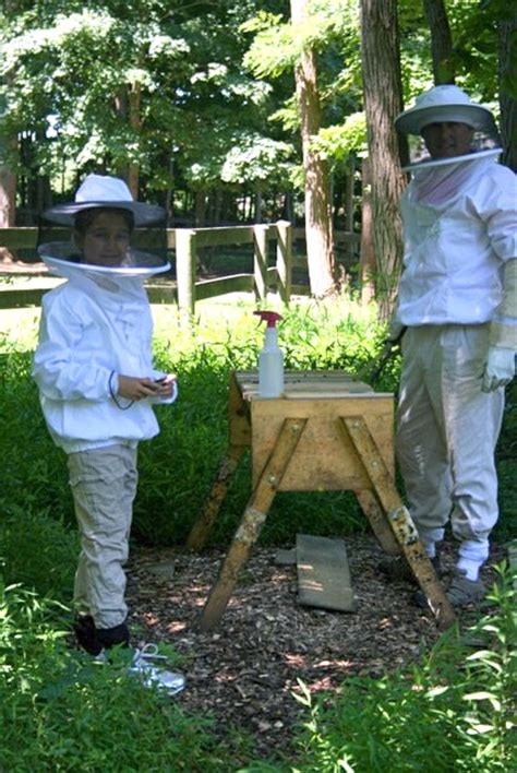 be the bee backyard beekeeping basics simple living