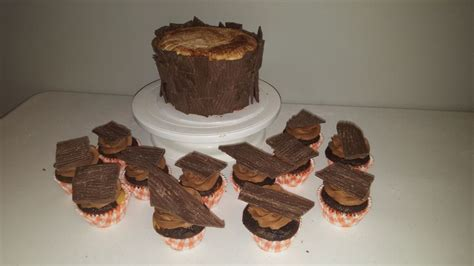 tree cake recipes tree stump cake with matching cupcakes cakecentral