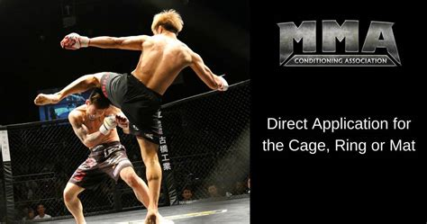 Mixed Martial Arts Conditioning Association Become An | mixed martial arts conditioning association become an