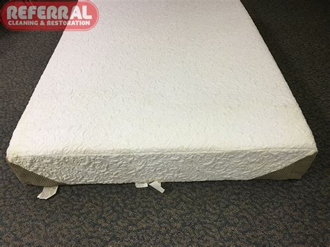 upholstery foam nyc clean mold mattress 28 images mattress cleaning