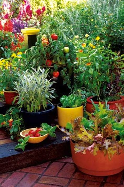 40 Best Images About Garden Containers On Pinterest Potted Vegetable Garden