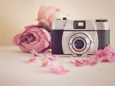 camera wallpaper for tablet download 2048x1536 vikinar acromatico pink flower camera