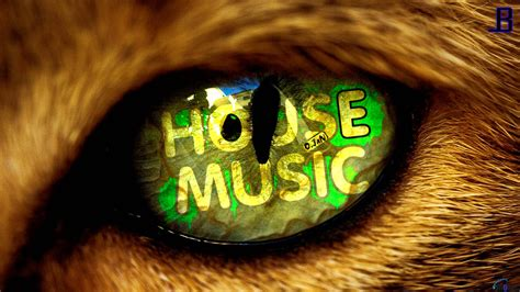 house musical house music wallpaper hd by leadbeats on deviantart
