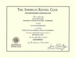service dog certificate template free printable service dog certificates 15 certificate templates free amp premium templates