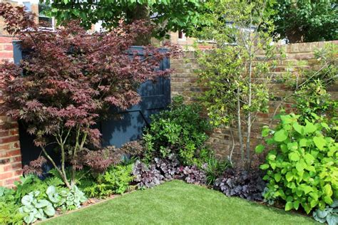 top 10 best trees for small gardens living colour gardens