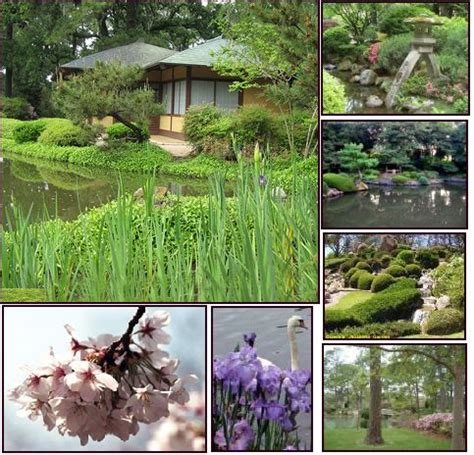 houston botanical gardens hermann park 138 best photography locations houston images on