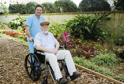 indoor gardening ideas for seniors gardens for nursing home residents learn about gardening with dementia patients
