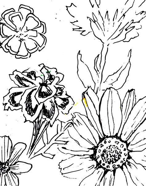 day of the dead coloring pages flowers free day of the dead flowers coloring pages
